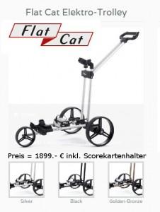 Elektro-Trolley